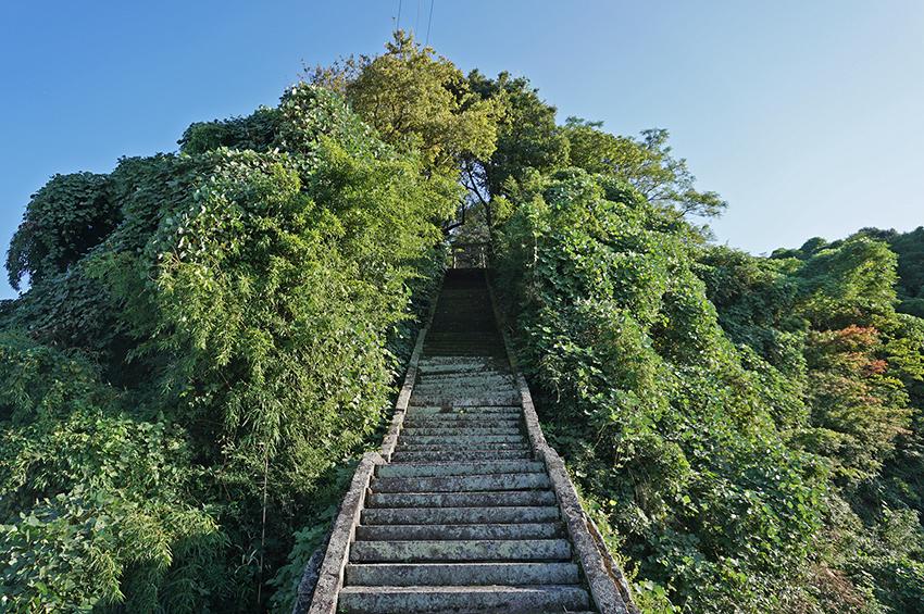事比羅神社の石段
