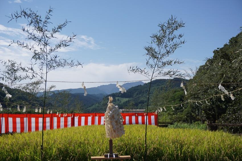 祐徳稲荷神社の御斎田