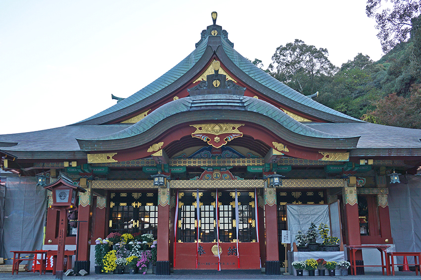 祐徳稲荷神社の神楽殿と菊の花
