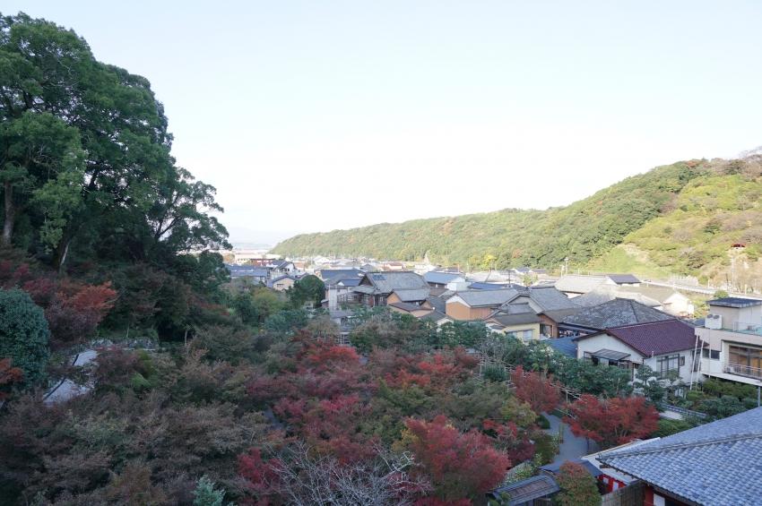 日本庭園の眺望