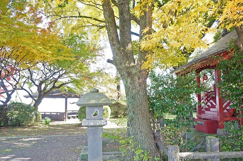 事比羅神社の社殿と紅葉