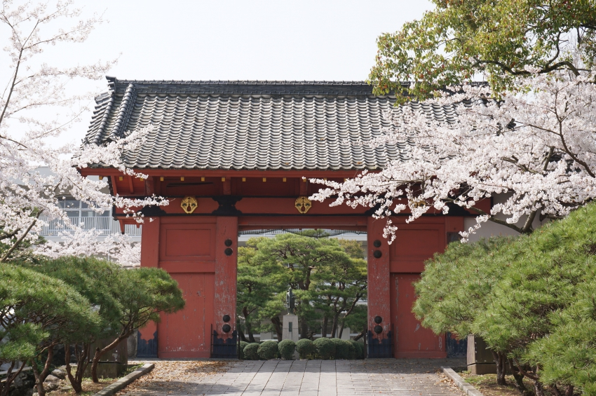 赤門(県の重要文化財)