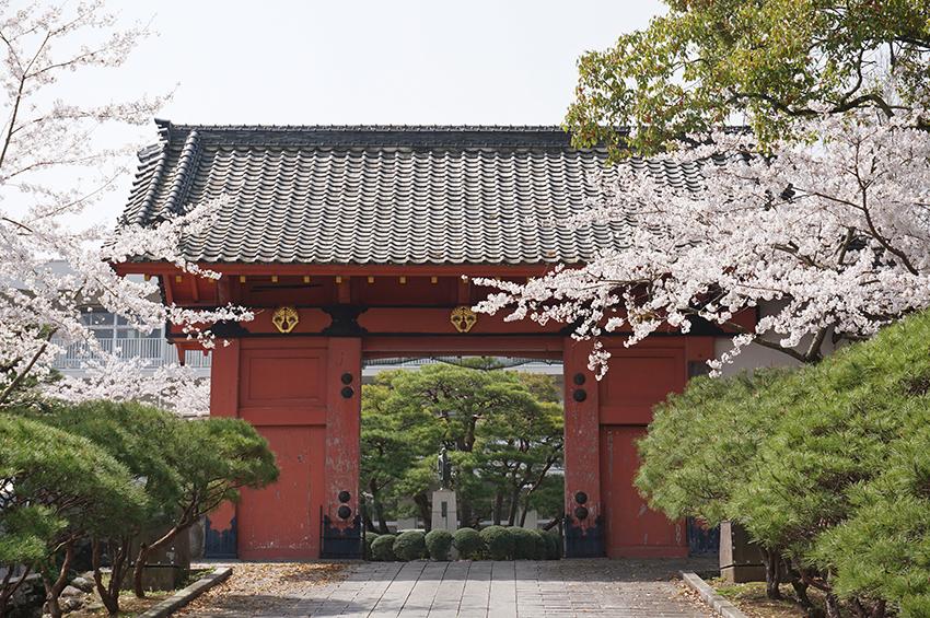 鹿島城本丸の赤門
